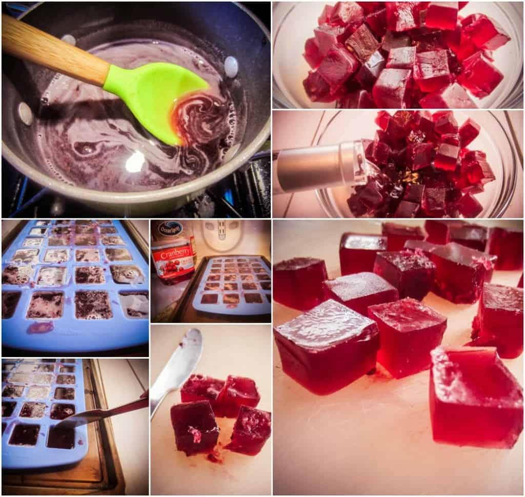 Cranberry Gin Fruit Snacks