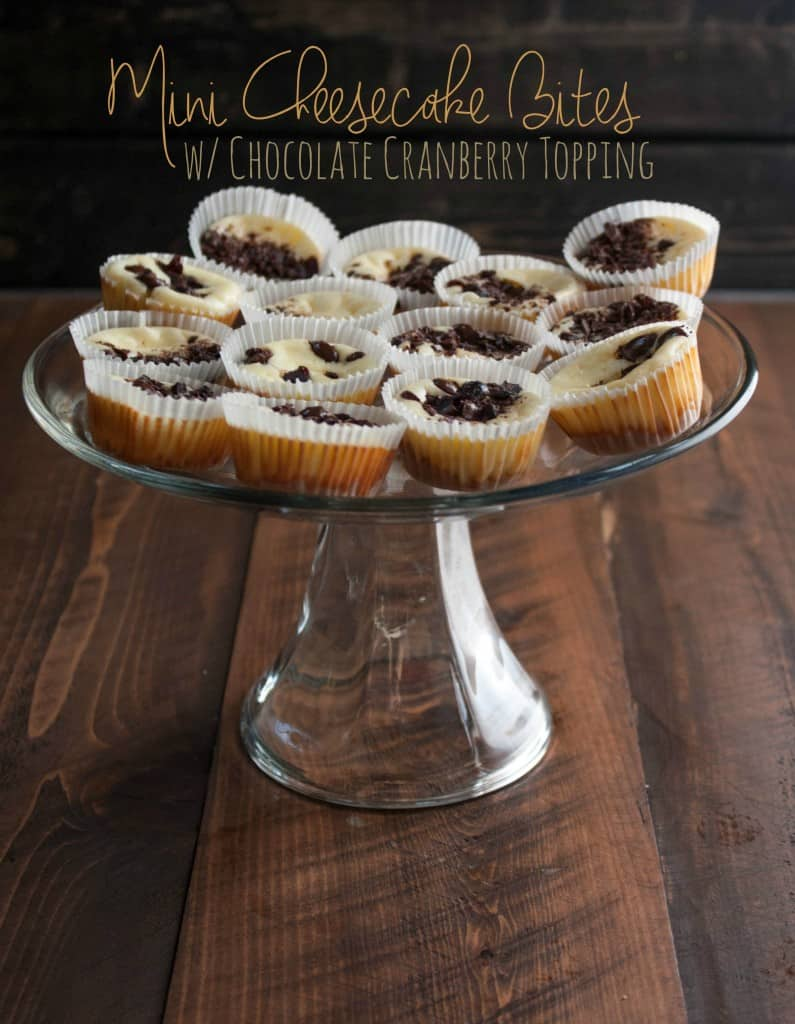 Mini-Cheesecake-Bites-with-chocolate-cranberry-topping