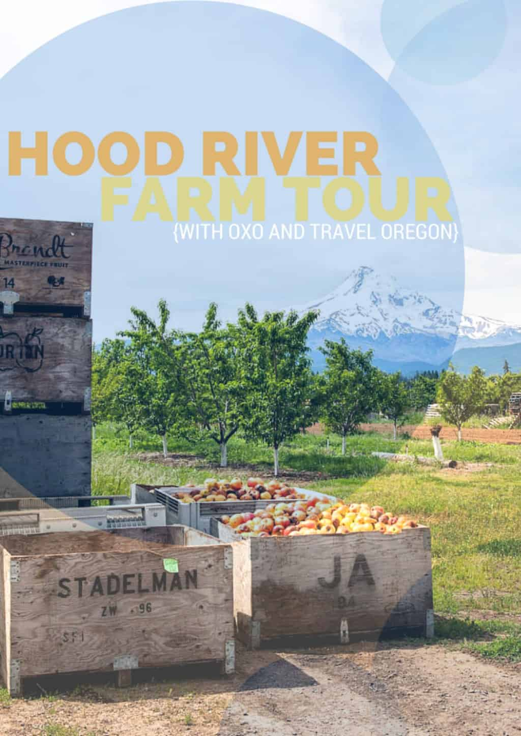 Hood River Farm Tour through the Hood River Valley Fruit Loop
