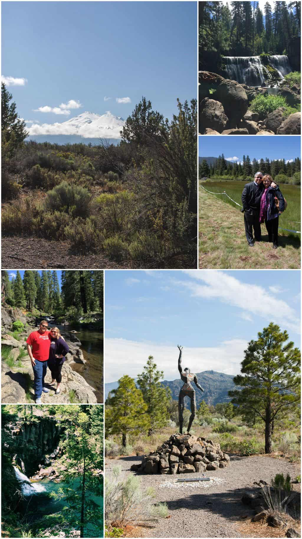 Weed California hiking and sculpture garden