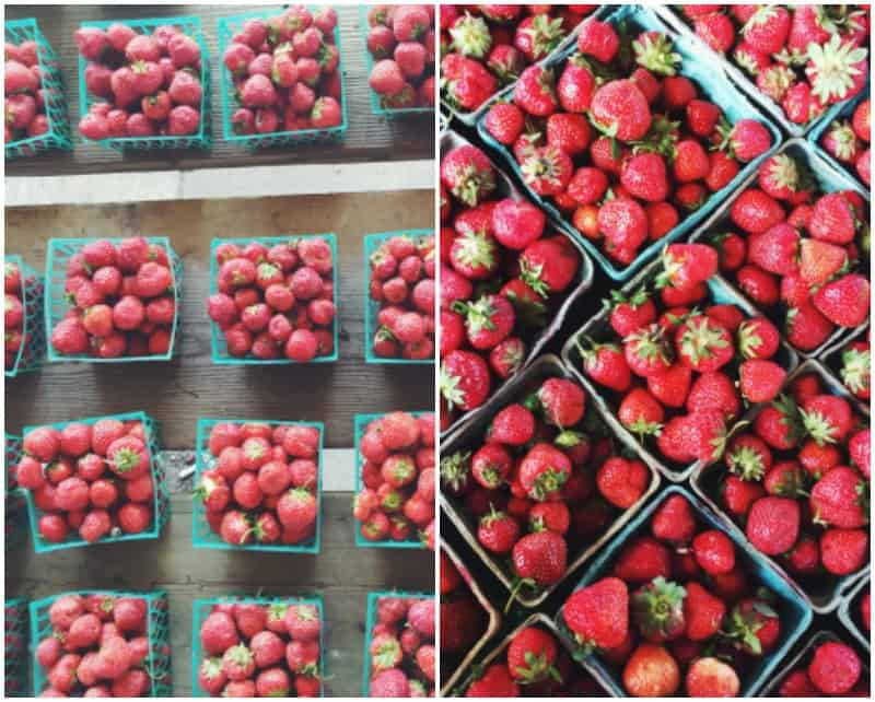 Strawberries from the farmers market @sweetphi