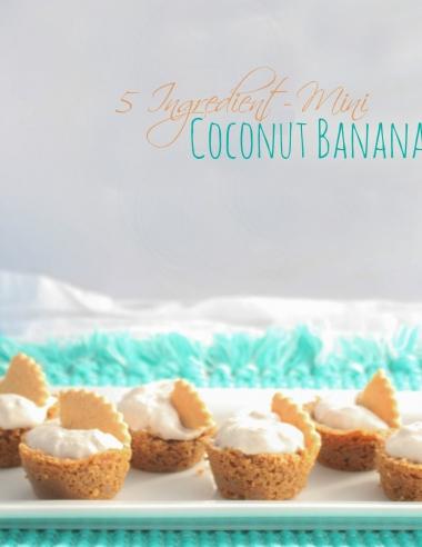 5 Ingredient Mini Coconut Banana Cream Pies & Salem Baking Co Giveaway!